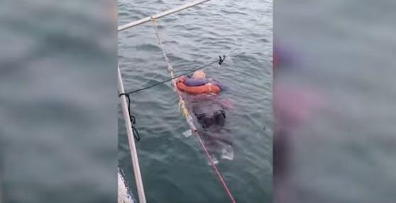 Acht Stunden lang trieb die 46-jährige Angelica Gaitan im Meer.