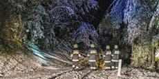 Wintereinbruch bringt erstes Schnee-Chaos