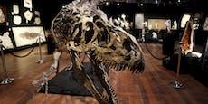 Riesiges Saurier-Skelett um drei Millionen versteigert