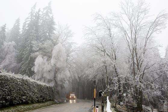 Ein vereister Wald in St. Radegund in der Steiermark