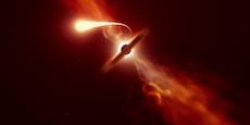 Forscher filmen letzte Momente eines zerrissenen Sterns