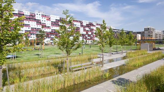 Die Schilfgärten im Rudolf-Bednar-Park, im Hintergrund Häuser an der Vorgartenstraße, Wien-Leopoldstadt