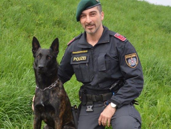 """Polizeihund """"Bosco"""" erschnüffelte in einem Kasten in Linz zwei Einbrecher."""