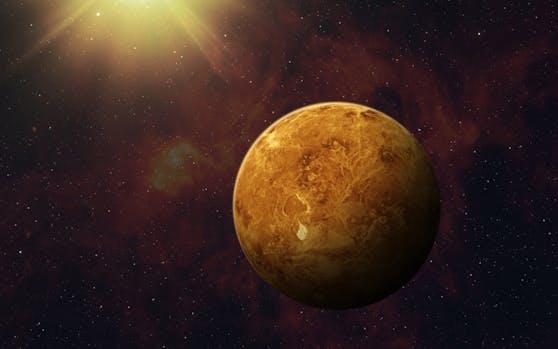 Es scheint möglich, dass sich wieder Leben auf der Venus entwickelt.