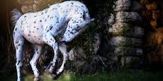 Pippi Langstrumpfs getupftes Pferd gibt es wirklich