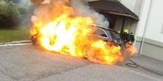 Hund aus brennendem Auto befreit