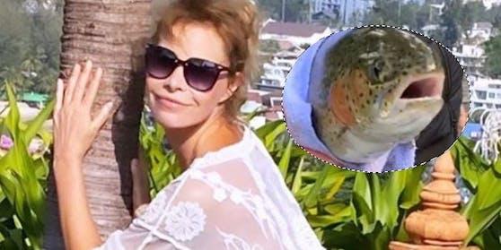 Irina Beller, Fisch