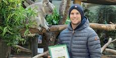Lieb! Dominic Thiem ist Pate von Koala-Baby