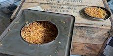 Dachbodenfund: So schmecken 76 Jahre alte Kartoffeln