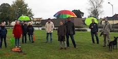 """Grüne kritisieren """"Kahlschlag"""" in Hohenauer Park"""