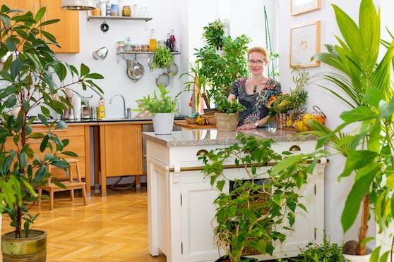"""Beim Fotowettbewerb """"Blühendes Zuhause"""" der Stadt Wien bekamKaty Schmidt die blumige Auszeichnung in der neuen Kategorie """"Indoor-Garten"""" für ihren Indoor-Dschungel in ihrer Wohnung in der Leopoldstadt."""