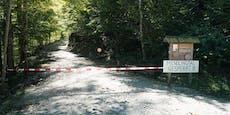 Kind von Baum erschlagen: Staatsanwaltschaft ermittelt