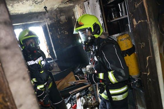 Bei dem Brand in Vöcklabruck wurde eine Frau verletzt, zwei Katzen starben.