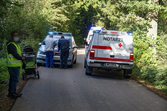 Oma und Enkerl waren in einem Waldstück in Thalheim bei Wels unterwegs.