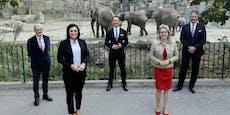 Elefanten in Schönbrunn bekommen neues Haus um 25,3 Mio