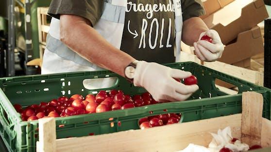 Immer mehr Menschen sind von Nahrungsunsicherheit betroffen. Zahlreiche ehrenamtliche Mitarbeiter sorgen bei der Wiener Tafel dafür, dass Lebensmittel gerettet und an Menschen in Not verteilt werden.