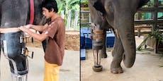 """Beinprothese für Elefantenmädchen """"Mosha"""""""