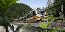 Mariazellerbahn und Citybahn weiten Angebote aus