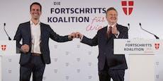 Rot-Pink will in Wien eine Seilbahn bauen