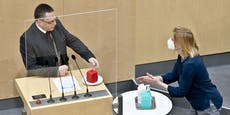 Punschkrapferl-Stichelei für die rot-pinke Koalition
