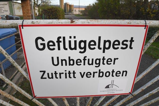 Download von www.picturedesk.com aEin Warnschild vor der Geflügelpest am Zaun eines Truthahn-Mastbetriebs in Vorpommern-Rügen, Deutschland