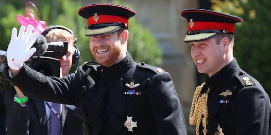 Die Erinnerung an ihre Mutter sorgt zwischen Prinz Harry und Prinz William für eine vorsichtige Annäherung.