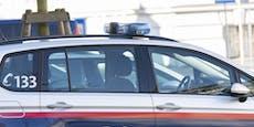 Polizisten konfrontieren Steirer, dann wird es bizarr