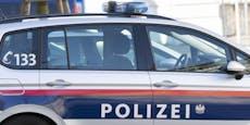 Dreister Alko-Rowdy schlug auf Polizisten ein