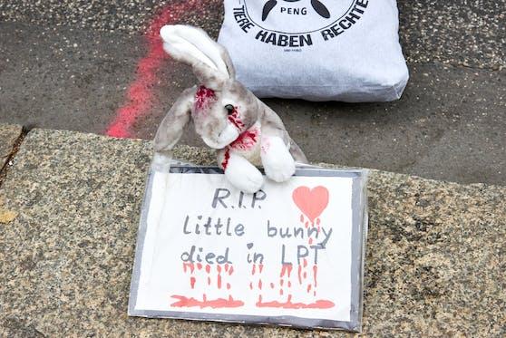"""Tierschützer atmen nun endlich auf. Das Skandal-Labor """"LPT"""" wurde geschlossen und wird nun in ein Tierheim umgewidmet."""