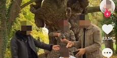 Hinrichtungsvideo – FPÖ will Alterscheck für Asylwerber