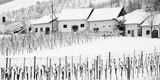 Neue Woche beginnt mit Schnee bis ins Flachland