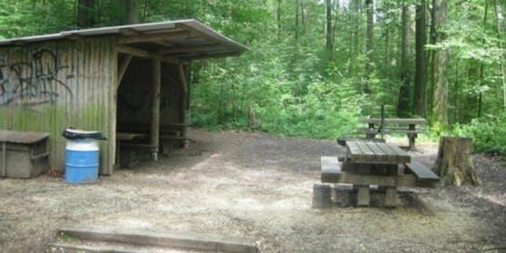 Im Oltner Bannwald (Schweiz) kam es am Sonntag zu einem Gewaltdelikt.