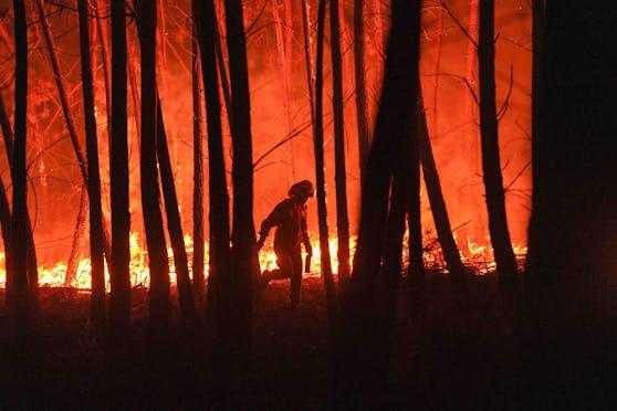 In Portugal kommt es immer wieder zu verheerenden Waldbränden.