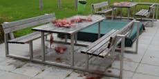 Spielplatz mit blutigem Schweine-Fleisch verschandelt