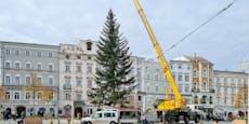 Hier wird der Linzer Christbaum aufgestellt