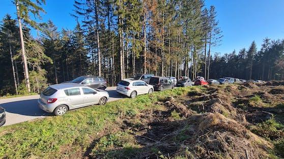 Ein riesen Griss um die Gis. Am Wochenende wollte viele Oberösterreicher noch einmal Sonne tanken.