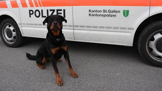Polizeihund Yodi erschnüffelte zwar die gestohlenen Chicken Nuggets, der Täter entkam seiner Spürnase aber.