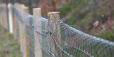 Bayern errichtet Pest-Zäune in Richtung Österreich