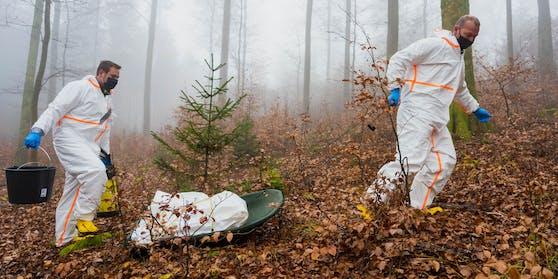 Afrikanische Schweinepest in Bayern: Mitarbeiter der Straßenmeisterei in Schutzanzügen trainieren die Entsorgung eines toten Wildschweins.