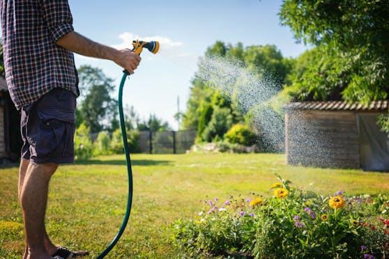 Wasser spielt im Garten eine außerordentlich wichtige Rolle – doch was ist in Bezug auf den Umgang mit der Ressource zu beachten und welche Schwierigkeiten könnten sich in Zukunft ergeben?