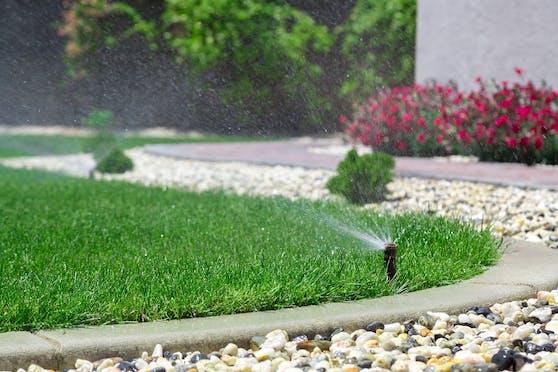 Welche Wassermenge der eigene Garten verbraucht, lässt sich schwer schätzen.