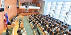 FP-Frau für Kraftwerk Hainburg im NÖ-Landtag