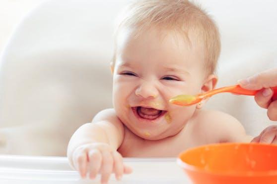 Fertiger Babybrei bietet eine große Vielfalt, allerdings oft eine mangelndeNährstoffzusammensetzung.