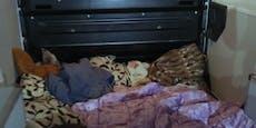 Schlepper zwängte 13 Flüchtlinge in diesen Wagen