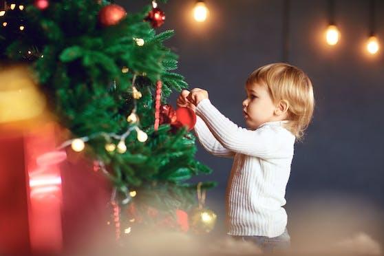 Angst vor Insekten? Dann solltest du auf eine echte Tanne an Weihnachten besser verzichten.