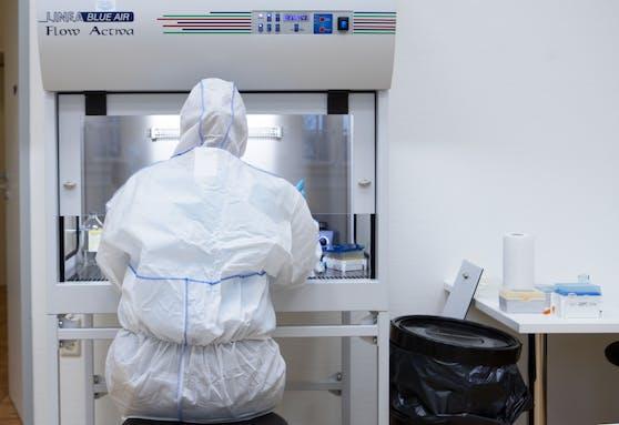 Im Labor werden die Proben untersucht und dann zur AGES nach Wien geschickt.