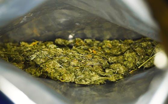 Von Polizei beschlagnahmter Beutel voller Cannabiskraut. Symbolbild