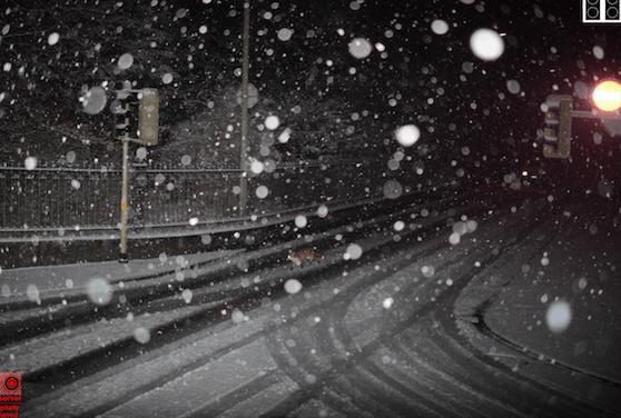 Im dichten Schneetreiben das Rotlicht missachtet: In Winterthur wurde ein Fuchs geblitzt.
