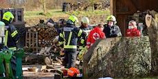 Frau von umgestürzter Palette mit Holz verschüttet