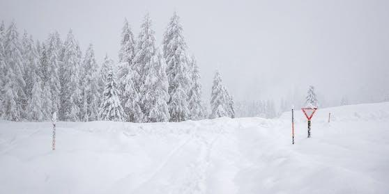 Schneefälle bis ins Tiefland, teils 10 cm in einer Stunde.